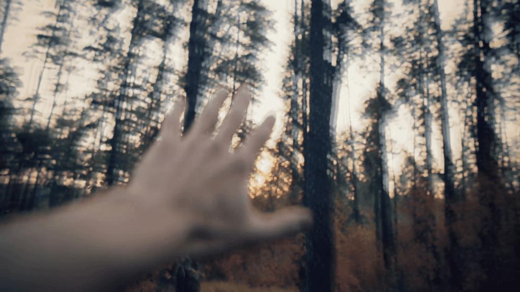 halucynacje i zaburzenia wzoru po marihuanie